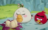 Angry Birds Çizgi Film Bölüm 5