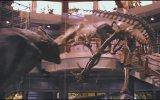 Jurassic Park 3D - TV Fragman (Bekle)