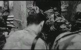 La Battaglia Di Algeri / The Battle Of Algiers